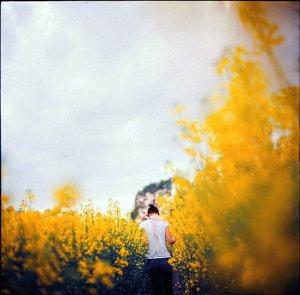 RBA-flowerfield